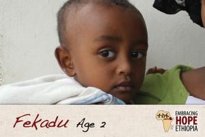 EHE152-Fekadu-1