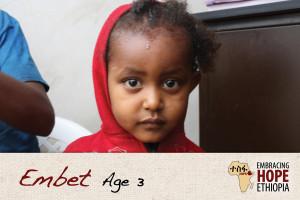 EHE161-Embet-1